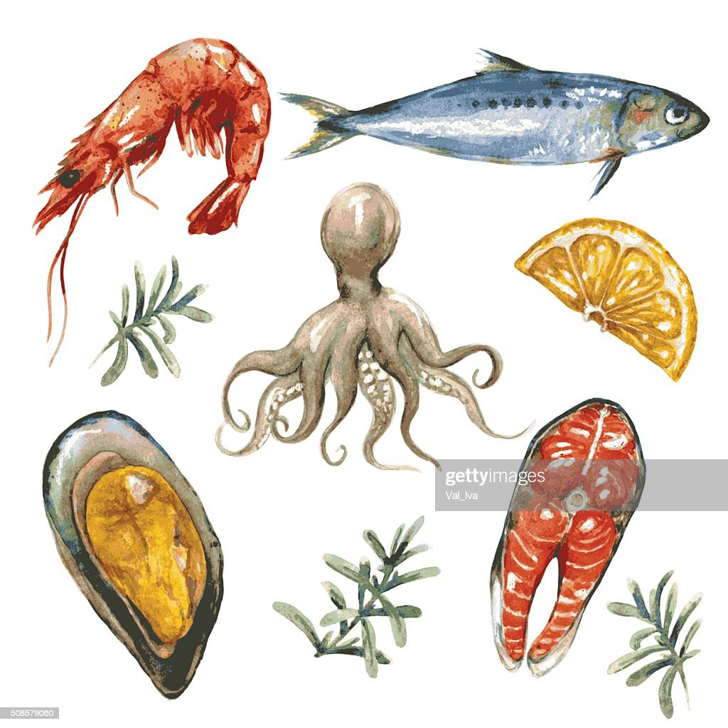 Sea Food Set : Vector Art