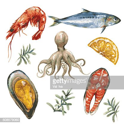 Sea Food Set : Vector Art