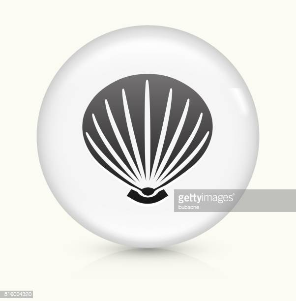 Sea Shell icon on white round vector button