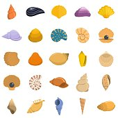 Sea shell icons set. Flat illustration of 25 Sea shell vector icons isolated on white