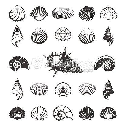 Seashell Silhouette
