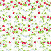 Vector pattern of the branches with the ripe berries.
