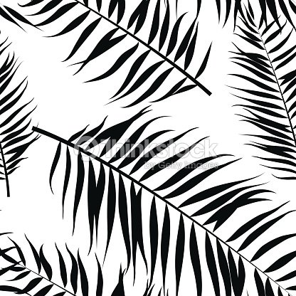 Seamless Color Palm Leaves Pattern Flat Style Black And White Vector Art