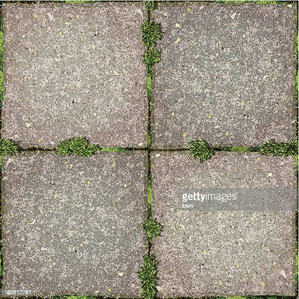 seamless garden tiles  with moss background