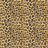 Leopard seamless pattern design, vector illustration backgroundd
