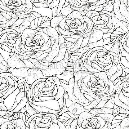 Sin Costura Patrón Para Colorear Libro Rosas Arte vectorial   Thinkstock