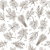 Seamless pattern with hand drawn sketch herbs and spices for farmers market menu design. Vector background culinary herbs in ink retro style.