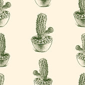 Vector pattern of cactuses in the pots.
