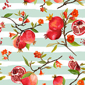 Seamless Pattern. Pomegranate Tropical Background. Floral Pattern. Flowers, Leaves, Fruits. Vector