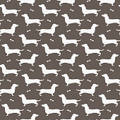 Seamless pattern with black silhouettes of dachshund. Vector illustration.