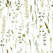 Vector seamless pattern with silhouettes of flowers and grass, drawing by watercolor, hand drawn vector illustration