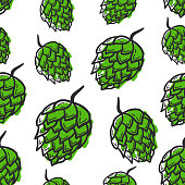Seamless pattern with hand drawing hop on white background