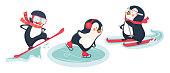 Active penguins in winter. Winter sports vector illustration.