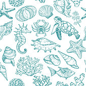 Seamless pattern with sketch of Seal Ocean life organisms shells, fish, corals and turtle. Hand Drawn illustration.