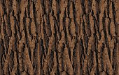 Bark seamless pattern