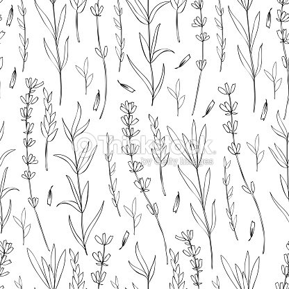 Seamless vector floral pattern hand drawn lavender flower decorative seamless vector floral pattern hand drawn lavender flower decorative texture sketch isolated on junglespirit Gallery