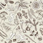 Seamless vector pattern with hand drawn spices and herbs. Decorative vintage background.