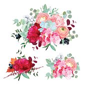 Seasonal mixed bouquets of peony, ranunculus, succulents, hydrangea, carnation, brunia, blackberries and eucalyptus leaves vector design set. All elements are isolated and editable.