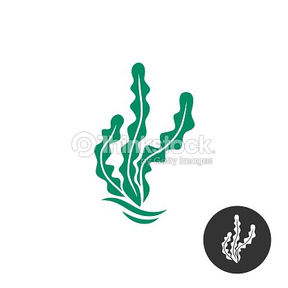Seaweed Vector Symbol Template One Black Color Monochrome Version ...