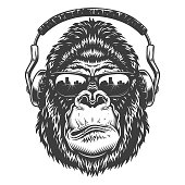 Serious gorilla in monochrome style with headphones. Vector illustration
