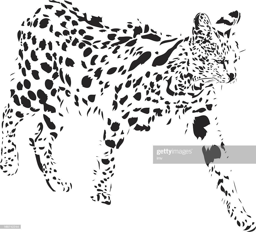 Serval in B&W : Vector Art