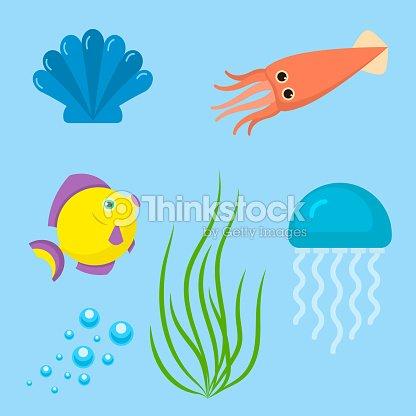 Set aquatic funny sea animals underwater creatures cartoon characters shell aquarium sealife vector illustration