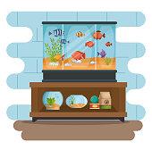 set beautiful aquariums icons vector illustration design