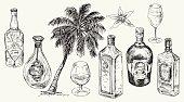Set bottle for rum. Vector hand drawn illustration.