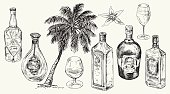 Set bottle for rum. Vector hand drawn illustration.