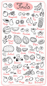 Set drawings of fruits for design menus, recipes and packages product. Vector Illustration.