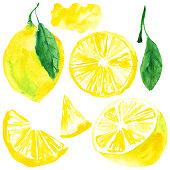 Watercolor illustration, lemon