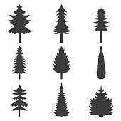 Set of abstract stylized balack trees silhouette. Vector illustration.