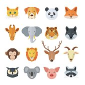Animal portrait illustration