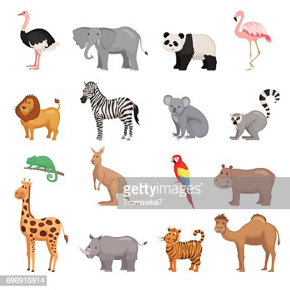 Satz von Tieren des Zoos : Vektorgrafik