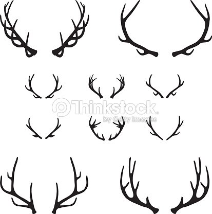 Fighting Bull Elk 6 X 6 Decal Sticker For Car Truck Bow Arrow Blind Deer Hunt p 571 together with 523444235 as well Antler Set further 80572280809855445 furthermore Head Of Deer With Horns 10736925. on deer antlers clip art