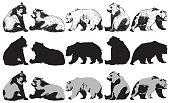 Set of bear on a white background, vector Illustration