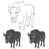 Set of black and white vector images with a bison