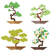 Set of bonsai. Japanese culture is the cultivation of bonsai. Miniature plants. Japanese culture is the cultivation of bonsai. Vector, illustration in flat style isolated on white background EPS10