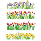 Set of Borders with multicolor vector spring flowers