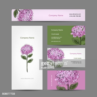 Set of business cards design with hydrangea flower : Vectorkunst