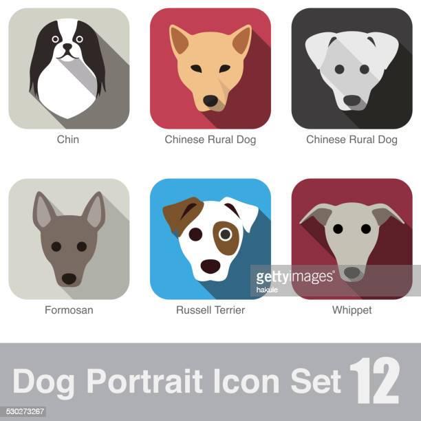 set of cute dog head icons, vector illustration