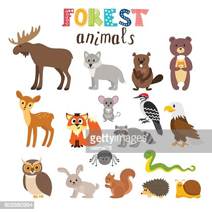 Set of cute forest animals in vector. Woodland. Cartoon style : Arte vettoriale