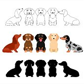 set of Dachshund group.