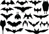 Set of different bats isolated