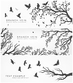 set of forest and birds banner Poster vector Design