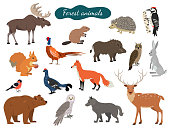 Set of forest animals on white background. Vector illustration.