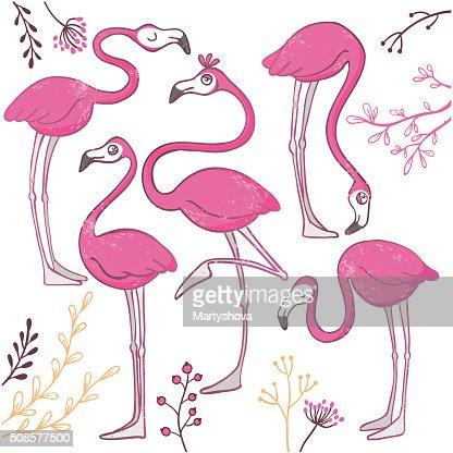 Set of funny hand drawn flamingos. : Vectorkunst