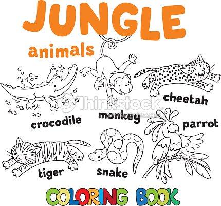 Set Of Funny Jungle Animals Coloring Book Vector Art