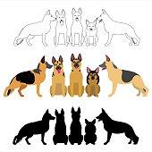 set of german shepherd group.