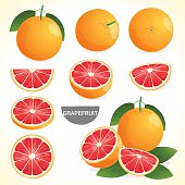 Set of grapefruit orange with leaf in various styles vector format
